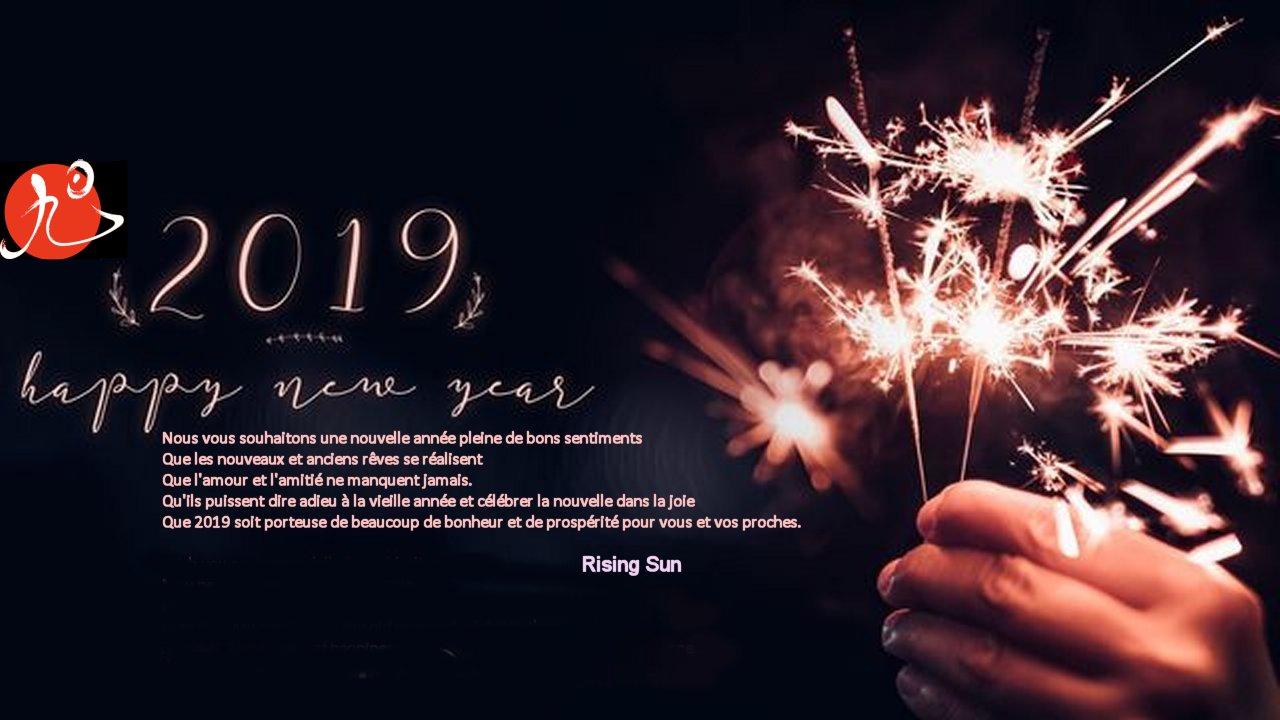 Bonne et heureuse ann e 2019 aikido kempo karate bruxelles - Bonne nouvelle anne ...